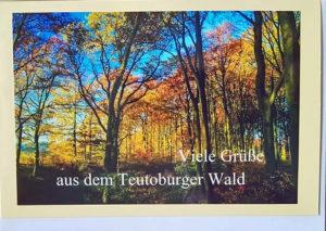 Postkarte Teutoburger Wald