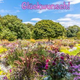 Postkarte Botanischer Garten Gütersloh