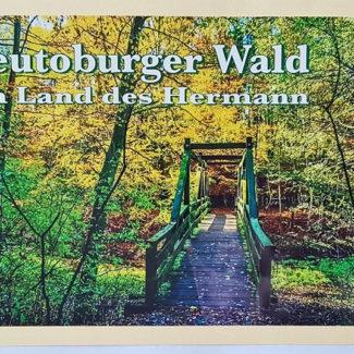 Teutoburger Wald Postkarte Donoper Teich